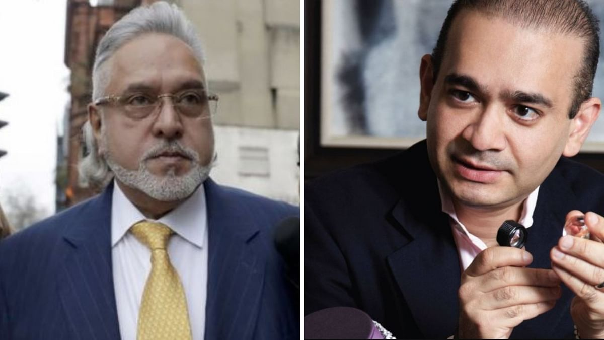 MEA Refuses to Share Extradition Details of Mallya, Nirav Modi