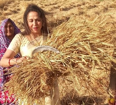 Hema Malini performs in new role as farm woman