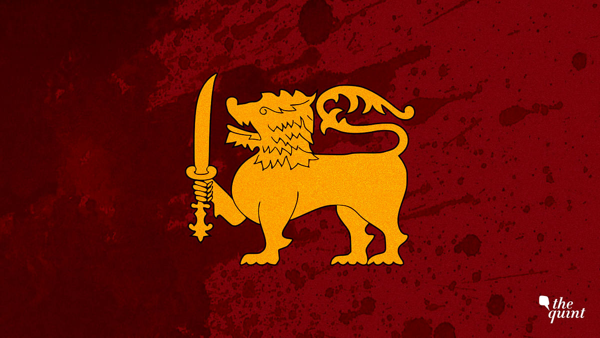 Image of Sri Lankan flag's centrepiece – the gold lion – used for representational purposes.
