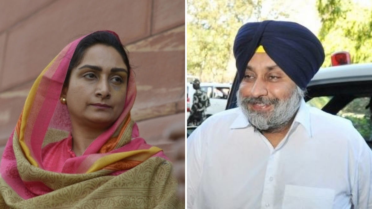 Sukhbir Badal Fielded from Ferozepur, Wife Harsimrat from Bathinda