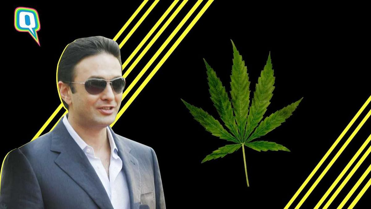 Ski 'Trips': Everything Else Ness Wadia Should NOT Do In Japan
