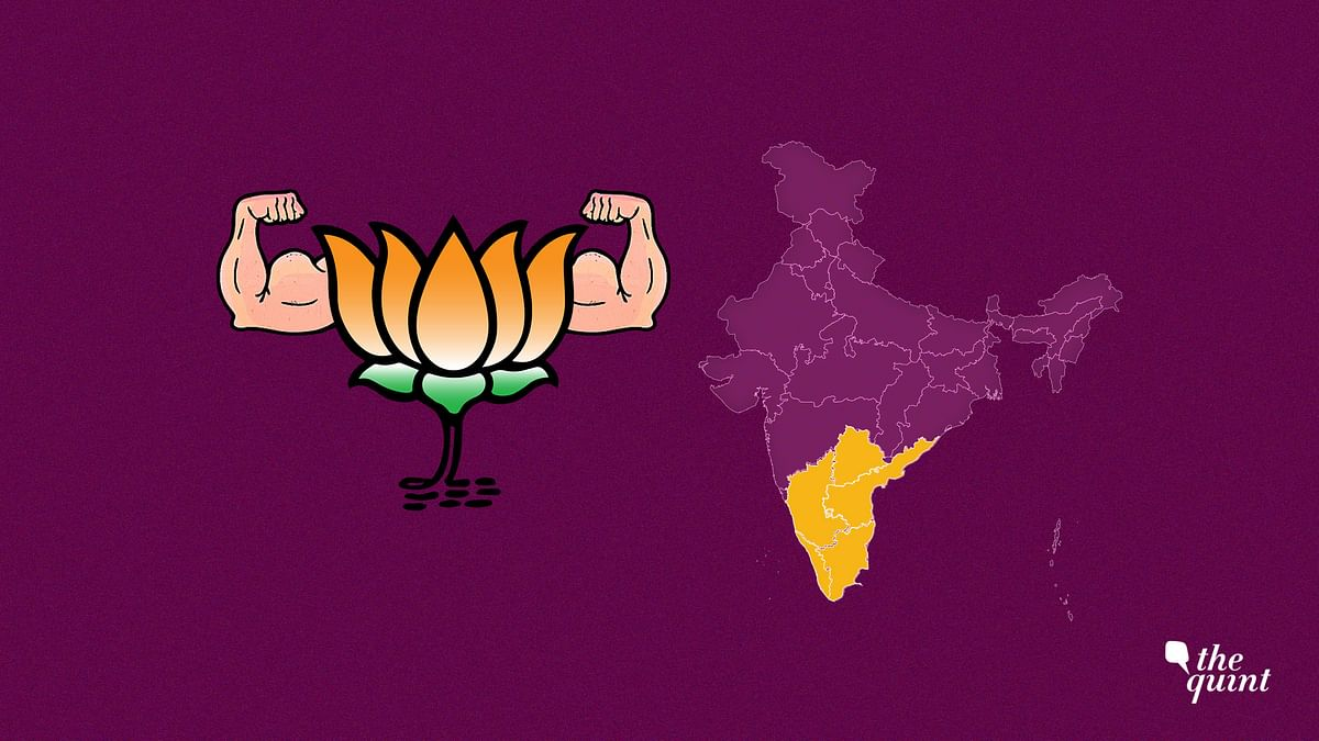 Exit Polls: Southern Parties May Have to Build Bridges With Modi