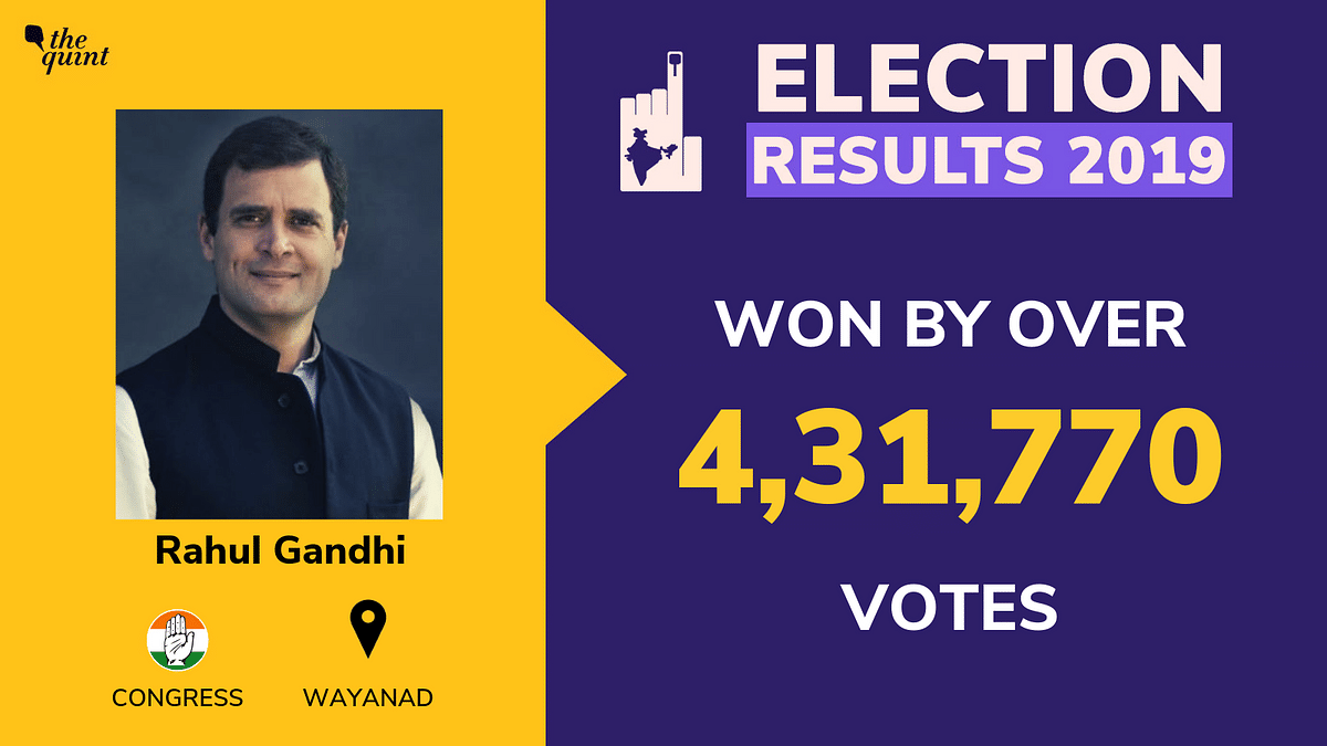 LS Results South India: Rahul Wins Wayanad By Over 4 Lakh Votes