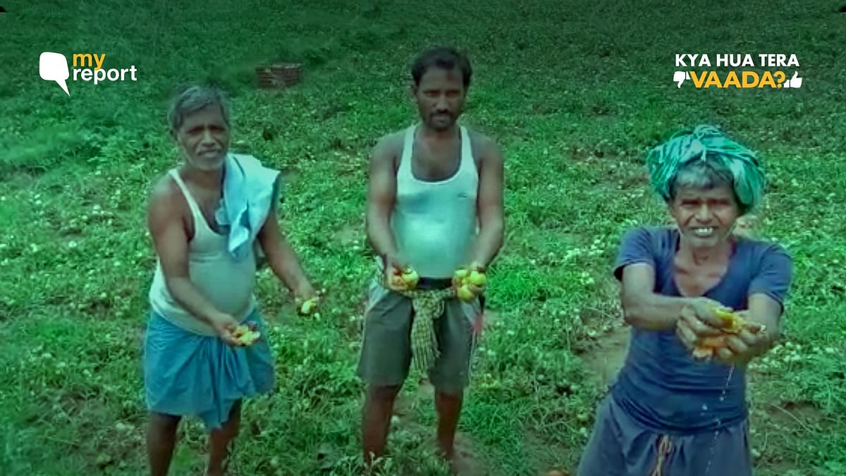 Only Option to Hang Ourselves: Jharkhand Farmers on Mounting Debts