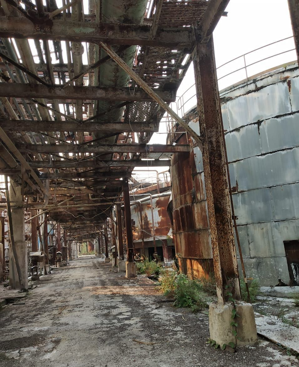 The abandoned paper mill in Nagaon.