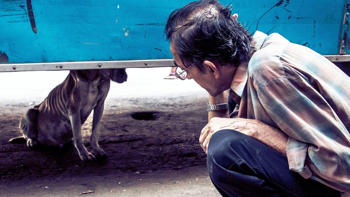 A still from the film <i>Pariah Dog</i>.