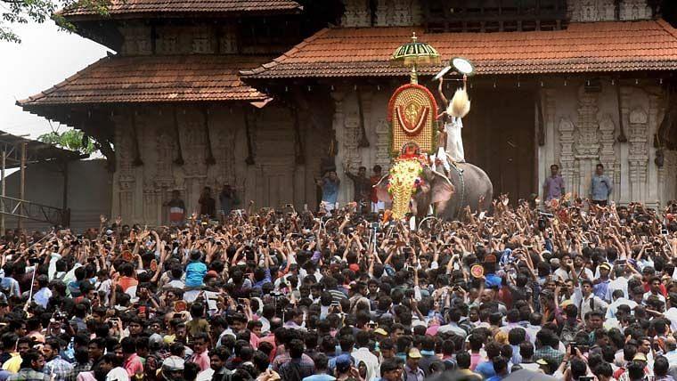 Kerala HC Refuses to Intervene in Thrissur Pooram's Elephant Ban