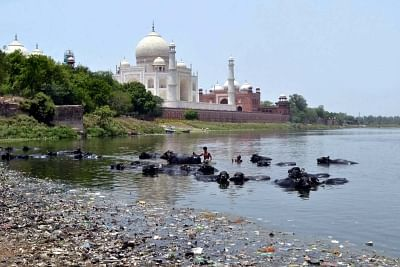The inordinate delay in granting permission for construction of a barrage on the Yamuna in Agra, about one-and-a half km from the Taj Mahal, could end up endangering the monument of love. (File Photo: IANS)