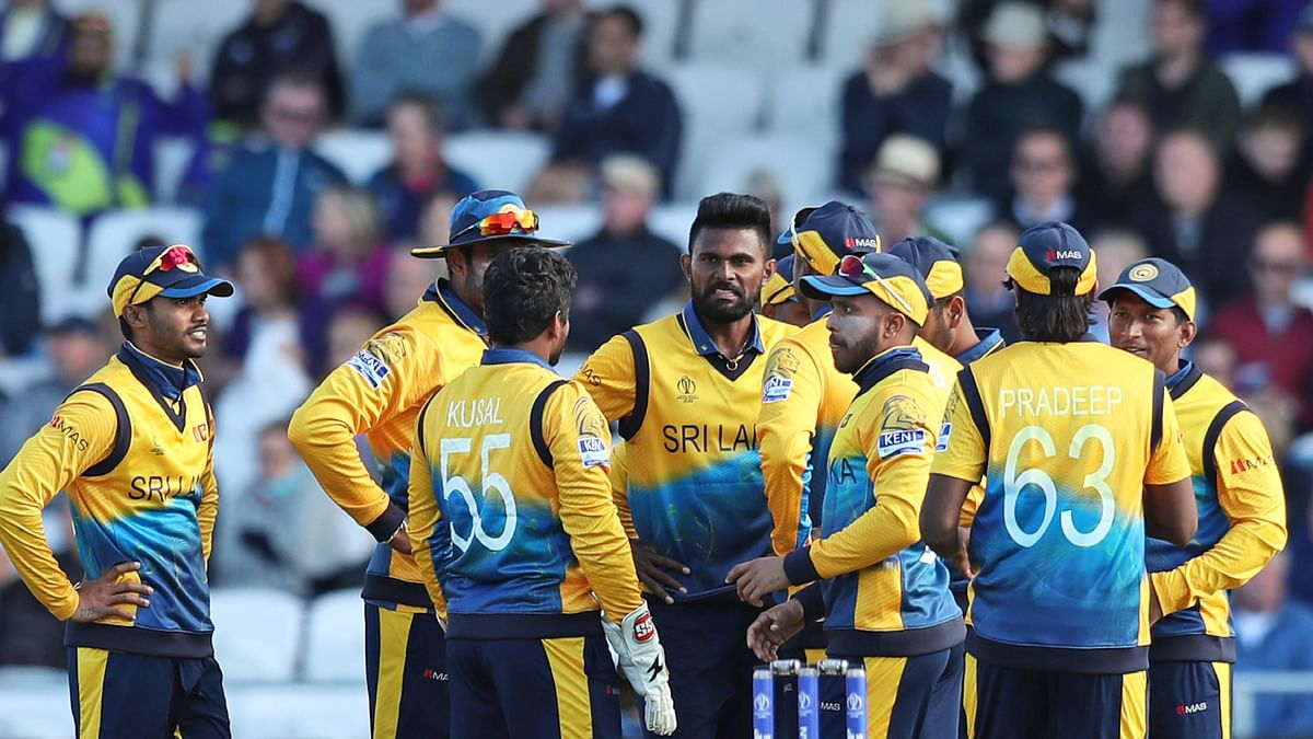 'World Cup is Alive, Courtesy Sri Lanka's Surprise Win': Sehwag