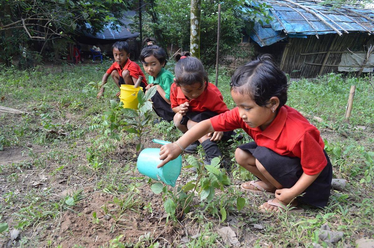 Students planting trees at Akshar School.
