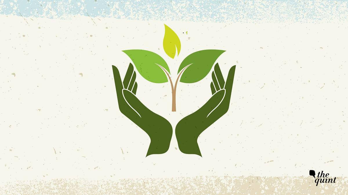 Delhi Group Vows to Save Trees in Environmental Armageddon