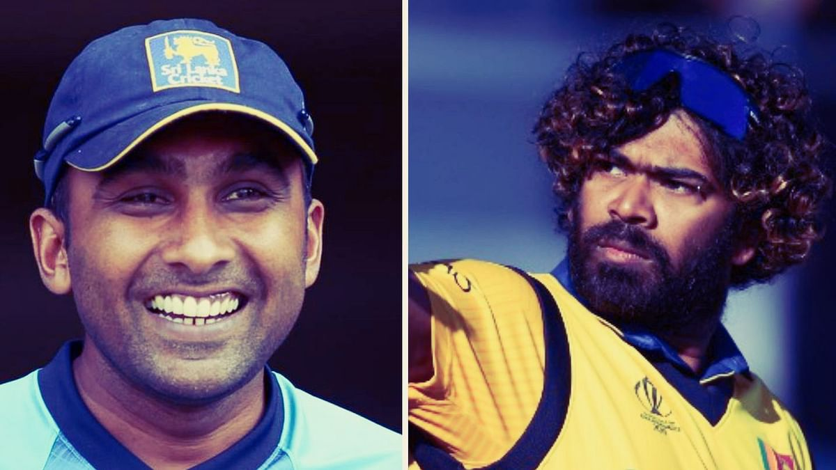 Jayawardene Uses Malinga's Viral Image to Hail His England Heroics