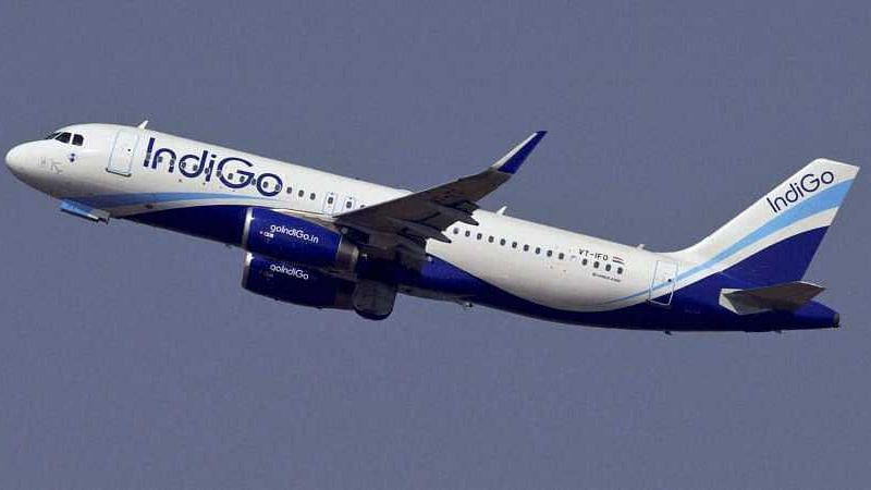 Indigo is India's largest domestic airline by market share.