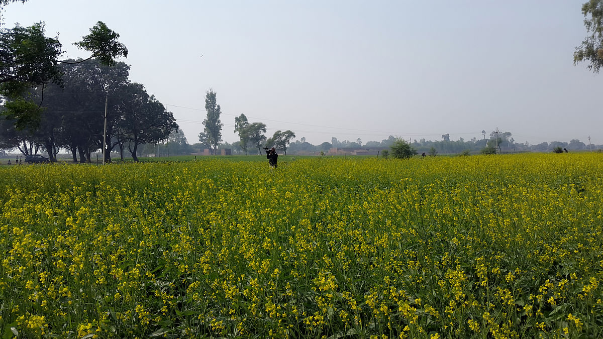 The events that led to the death of two teenaged girls in Badaun remain a mystery.