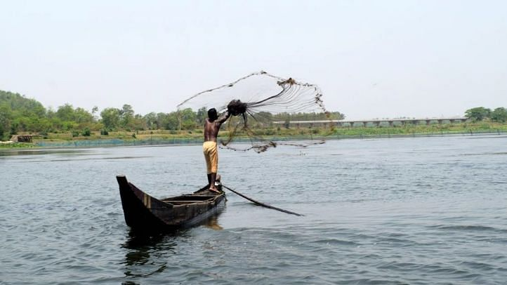 """File image of Odisha's Ansupa Lake.<a href=""""https://www.villagesquare.in/#facebook""""></a>"""