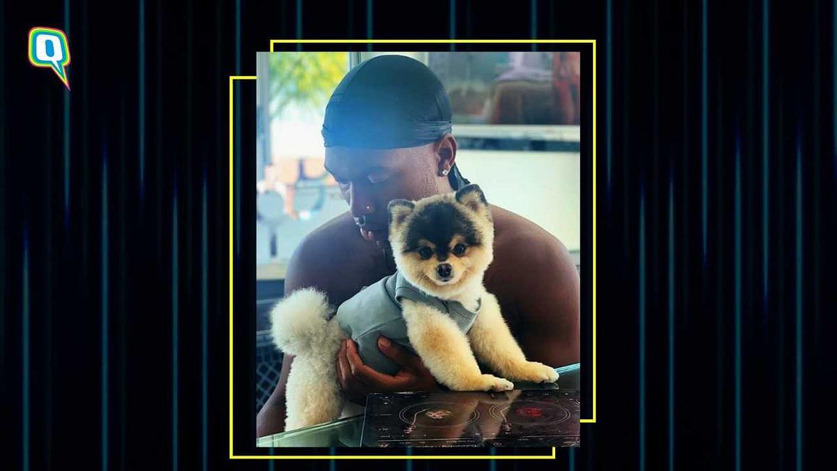 *Happy Tears* Daniel Sturridge Reunites With his Lost Puppy Lucci
