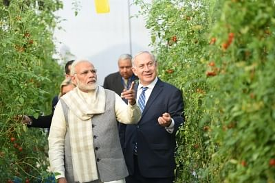 Vadrad: Prime Minister Narendra Modi and Israeli Prime Minister Benjamin Netanyahu during their visit to the Center of Excellence on Vegetables in Vadrad, Gujarat on Jan 17, 2018. (Photo: IANS/PIB)