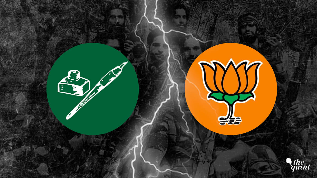 Kashmir Post Burhan: Has Militancy Declined After PDP-BJP Split?