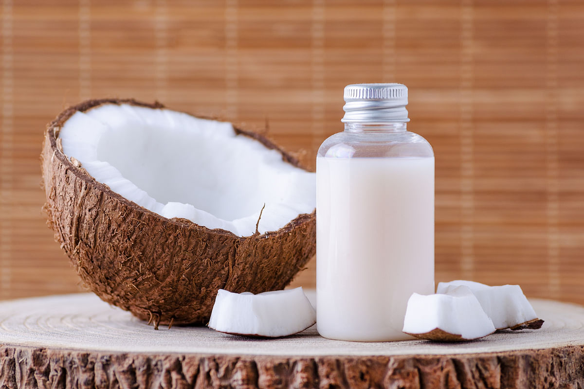 Coconut milk is great for making ice cream too.
