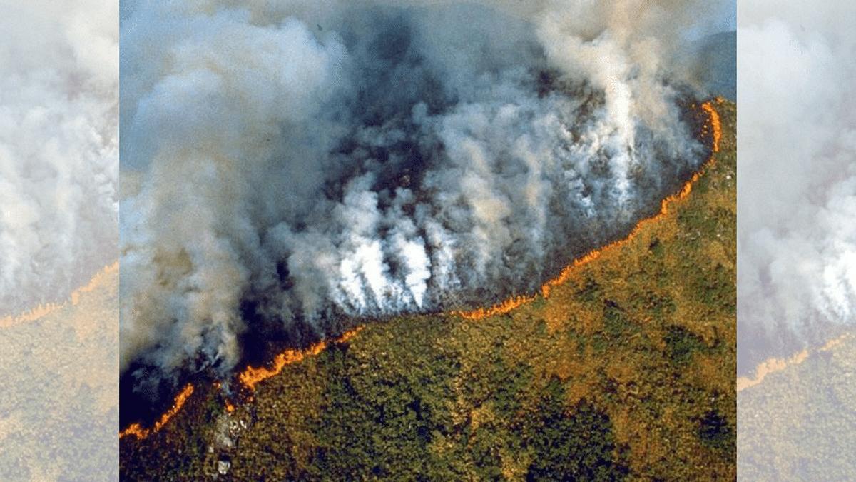 Brazil's Bolsonaro Blames Amazon Fires on NGOs as Twitter Erupts