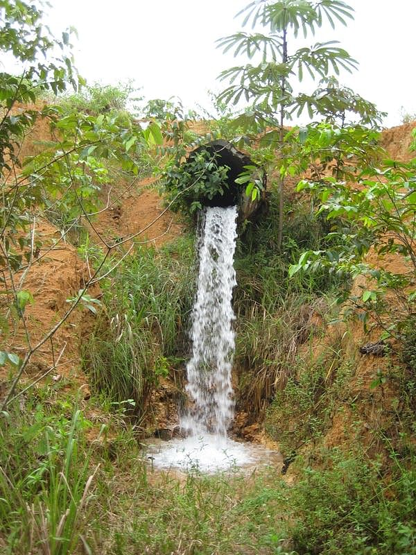 Perched culverts disrupt the water flow of Amazonian streams, isolating fish.