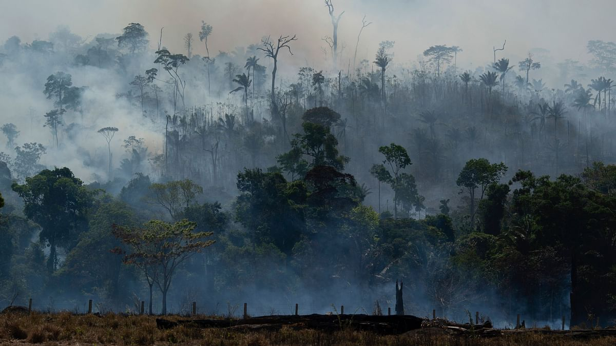 The Amazon forest scorched by fires, in a photograph from 27 August 2019.