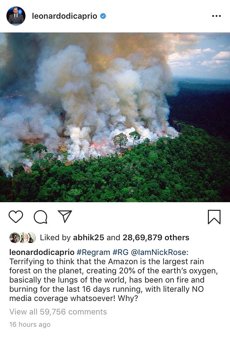DiCaprio, Alia Bhatt Fall for Fake 'Pray For Amazon' Viral Photos