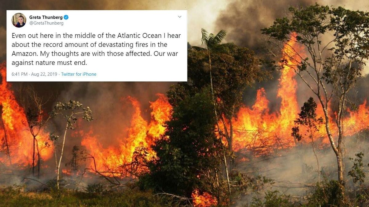 'If the Earth Dies, So Do We': Netizens On Amazon Rainforest Fire