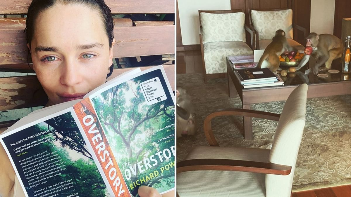 'GoT' Actor Emilia Clarke Arrives in India, Gets Robbed by Monkeys