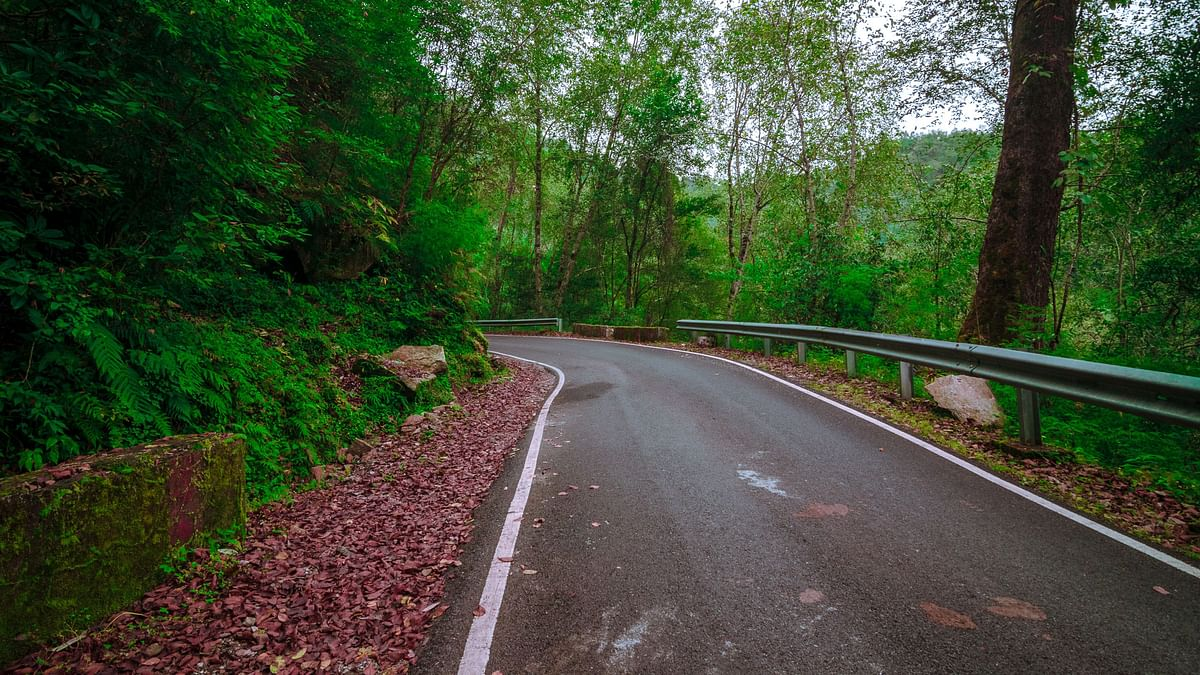 Ranikhet and the places in and around it look stunning in the rains.