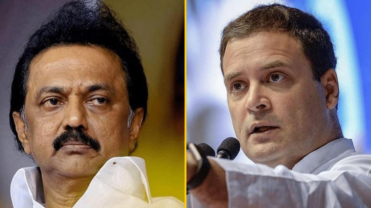 DMK Stalin and Rahul Gandhi.