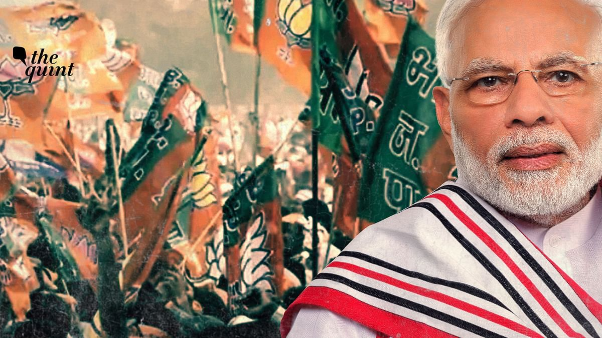 PM Narendra Modi's popularity doesn't seem to have been a factor in the bypolls