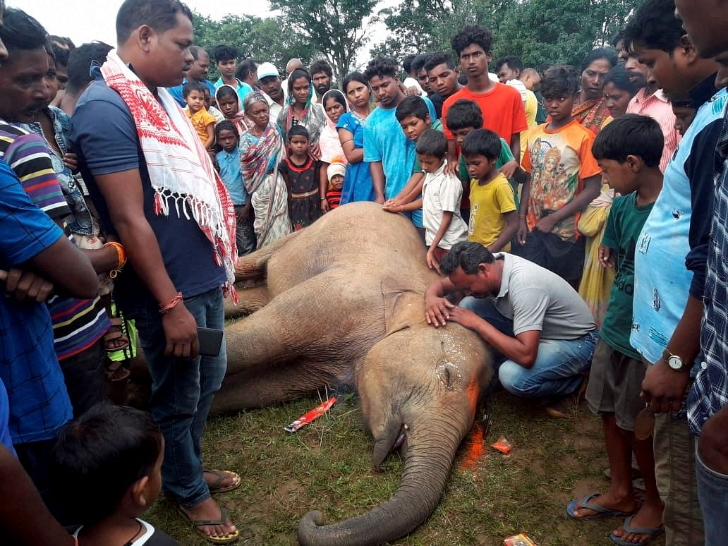 People mourn after a wild elephant was electrocuted in Ranchi district.