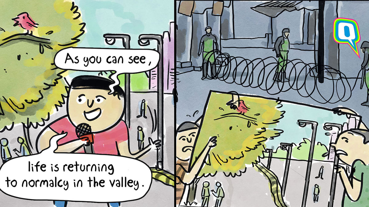 Cartoon: TV Channels Trying Too Hard to Show 'Normalcy' in Kashmir