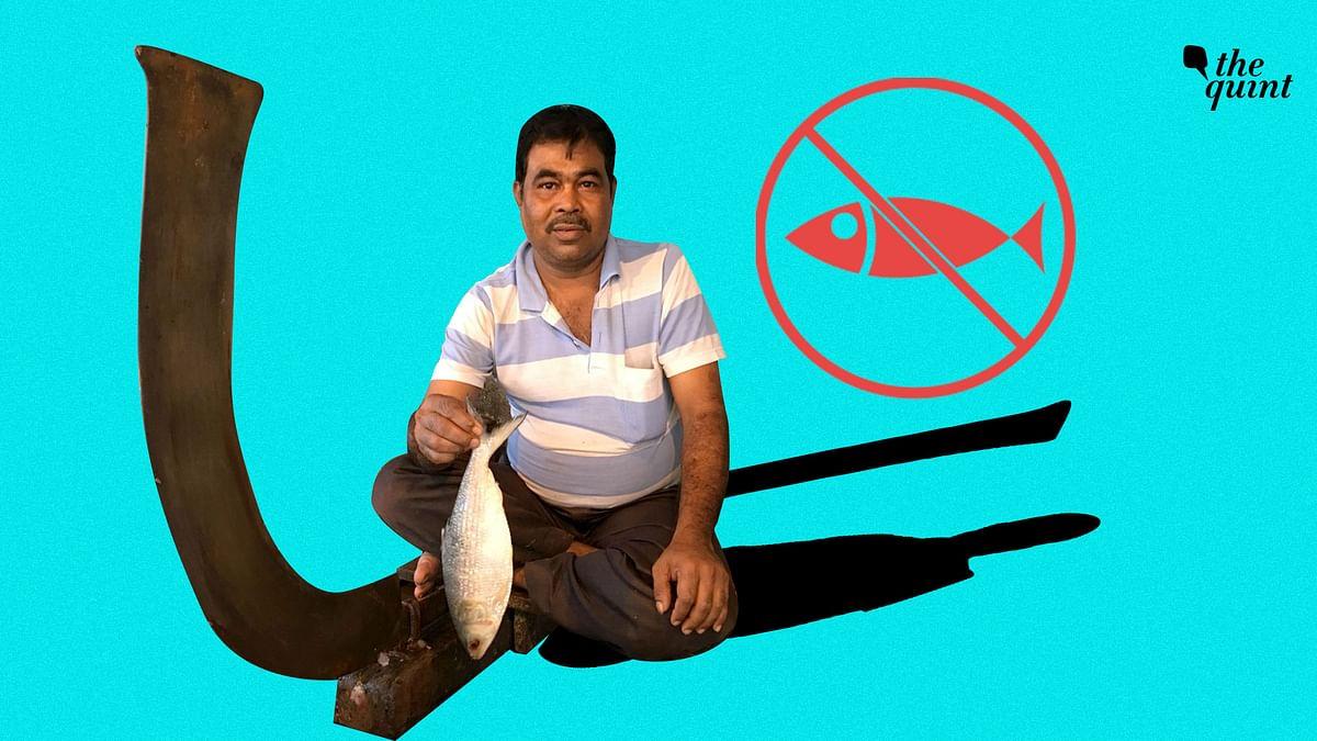 In Kolkata, It's Vegans Vs Fish-lovers Right Before Durga Puja