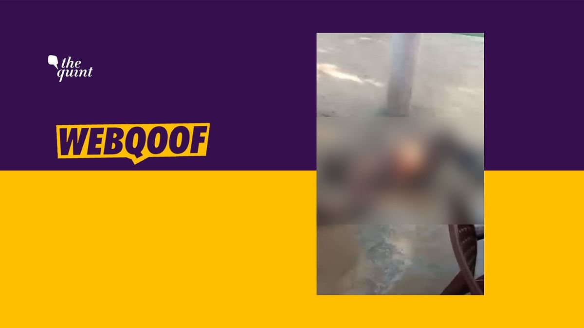 The video is from Uttar Pradesh's Mathura when a couple set themselves on fire inside a police station following police inaction against their neighbour.