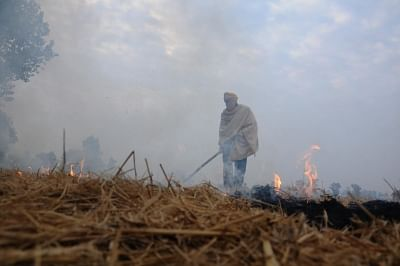 A farmer burns paddy stubble on the outskirts of Amritsar.