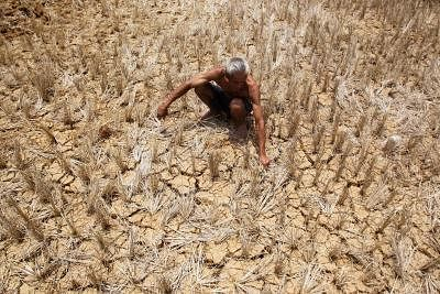 Drought-hit families in Bihar get Rs 3,000 each. (Photo: IANS)