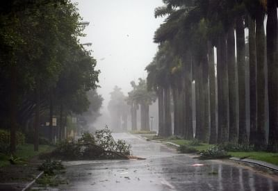 MIAMI, Sept. 10, 2017 (Xinhua) -- Trees and branches are seen on a street after being torn down by strong winds as hurricane Irma arrives, in Miami, Florida, the United States, on Sept. 10, 2017. Category Four Hurricane Irma on Sunday morning made landfall in the Florida Keys with gust wind speed of 171 km/h, according to the National Hurricane Center (NHC). (Xinhua/Yin Bogu/IANS)