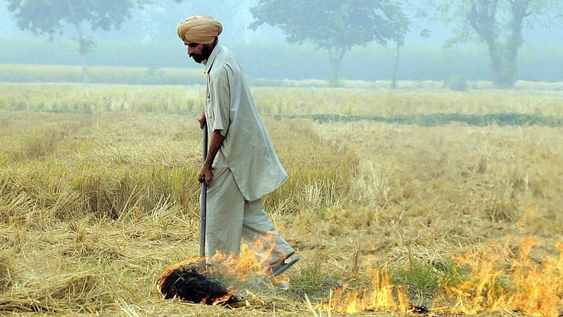 350 Incidents of Stubble Burning as Delhi Plans to Tackle Bad Air