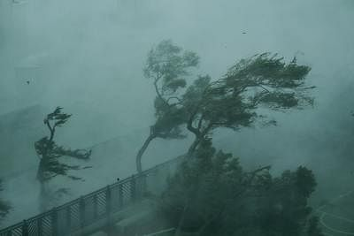 HONG KONG, Sept. 16, 2018 (Xinhua) -- Photo taken on Sept. 16, 2018 shows trees in the wind on the seaside in Hong Kong, south China. The Hong Kong Observatory issued the No. 10 hurricane signal, the top level warning, at 9:40 a.m. on Sunday, as severe typhoon Mangkhut is near. (Xinhua/Wang Shen/IANS)