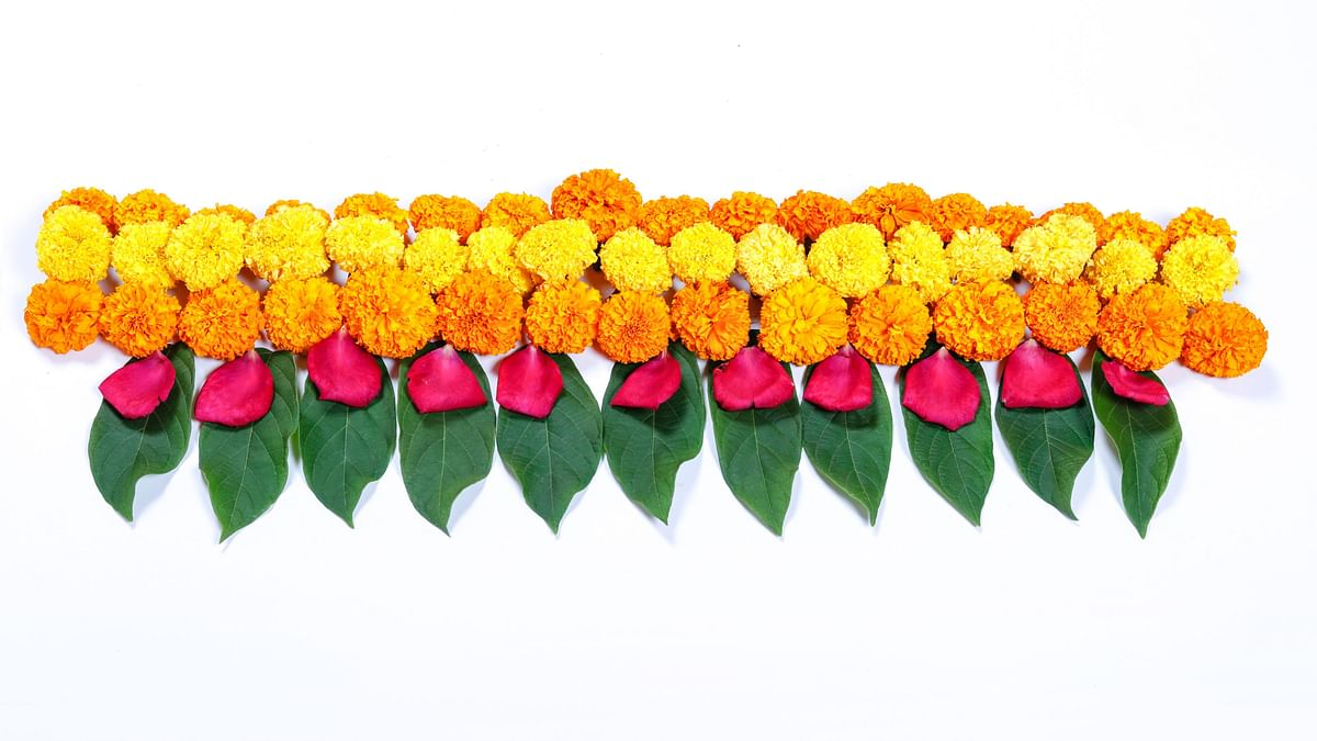 Use beautiful bandhanwars to decorate your house.