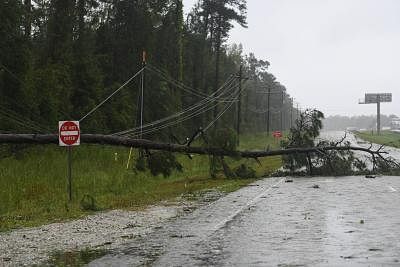 WASHINGTON, Sept. 15, 2018 (Xinhua) -- A fallen tree lies on the side of a road near coastline, in North Carolina, the United States, on Sept. 14, 2018. At least five people have been killed so far in the aftermath of Hurricane Florence which was downgraded Friday afternoon to a tropical storm with winds of 70 mph (110 km/h) along the U.S. East Coast. (Xinhua/Liu Jie/IANS)