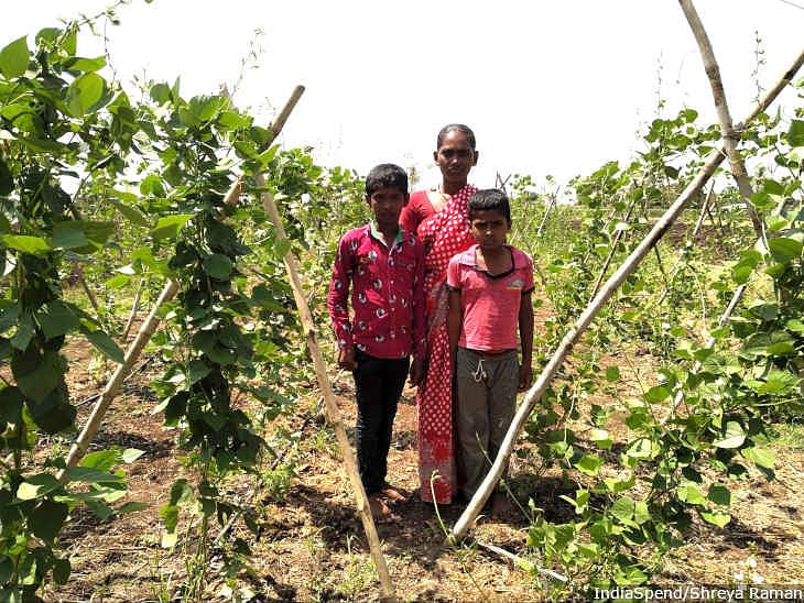 Savita Gaikwad's husband committed suicide due to farm debt three years ago. Gaikwad and her two children are now dependent on her father-in-law's land for survival.