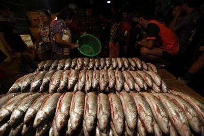Fish. (Xinhua/U Aung/IANS)