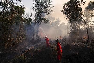 SOUTH SUMATRA, Aug. 18, 2019 (Xinhua) -- Firefighters try to extinguish fire in Ogan Ilir, South Sumatra, Indonesia, Aug. 18, 2019. (Photo by Muhammad Fajri/Xinhua/IANS)