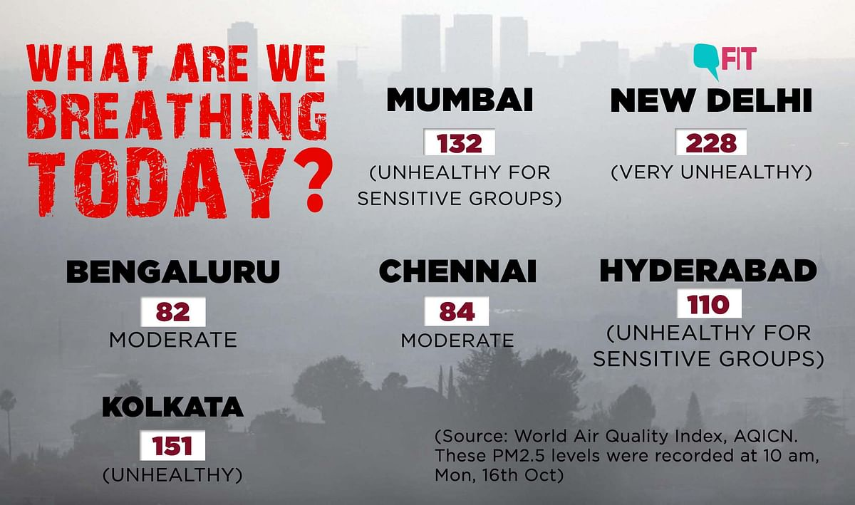 How is India Breathing Today? Check  Air Pollution Levels Here