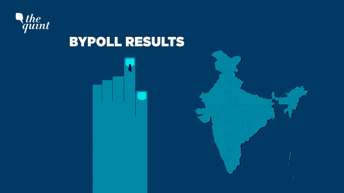 Bypolls: BJP, Allies Bag Most Seats; AIMIM Gains Toehold in Bihar