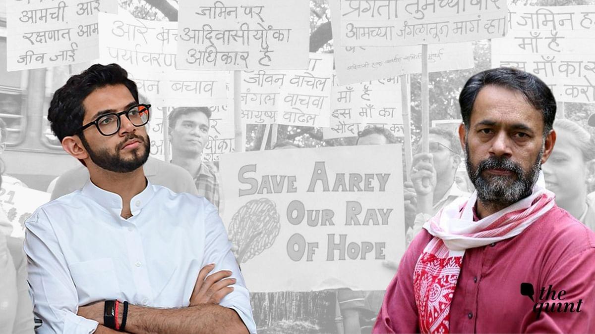 'Shameful, Disgusting': Netas, Activists On Tree Felling at Aarey