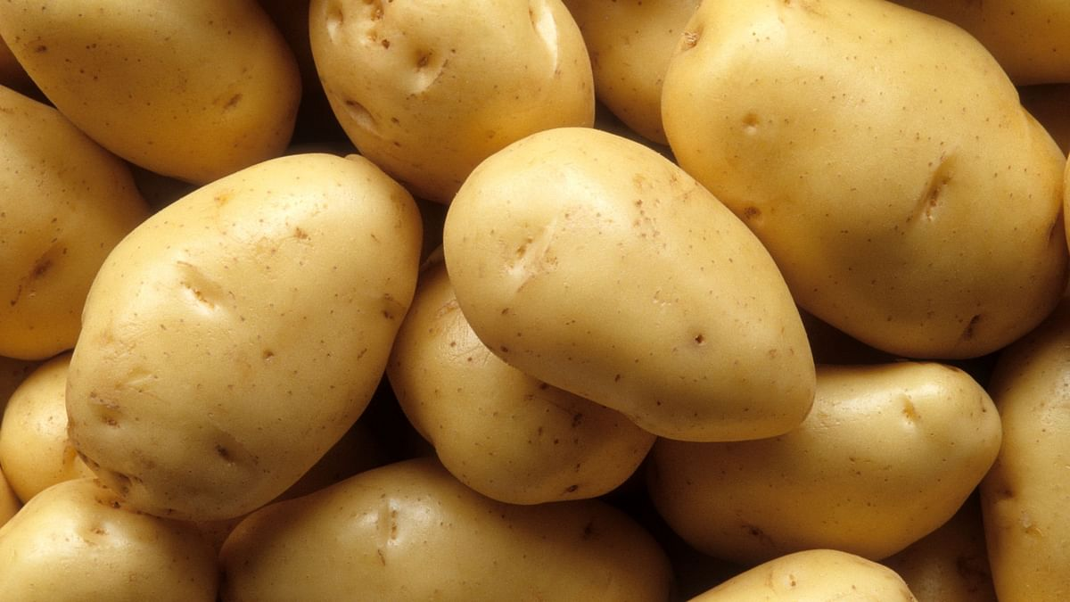Potatoes were once inexpensive, not anymore.